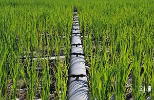锡林郭勒盟2011年牧区节水灌溉鉰草地项目